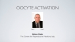 Oocyte Activation - Dr. Brian Dale