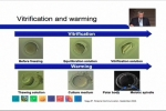 Vitrification and Warming